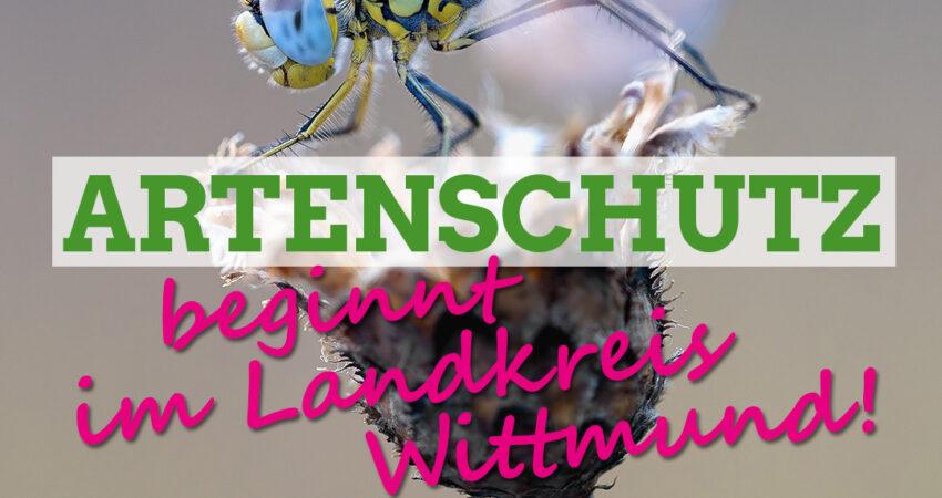 Sharepic Artenschutz beginnt im LK Wittmunf