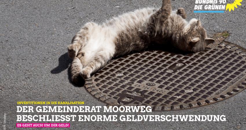Gemeinderat Moorweg beschließt Geldverschwendung